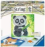 Ravensburger 18029String it Midi: Panda et Fox Kit de Jeu