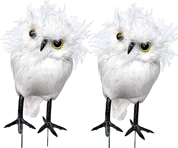 BANBERRY DESIGNS White Owl Figurines Set Of 2 White Feather Owls With Wire Feet Approx 4 Inches Tall Decorative Woodland Christmas Decor