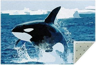 Amazon Com Orca Killer Whale Whale Fish Ocean Area Rug Carpet Non Slip Floor Mat Doormats For Living Room Bedroom160x120cm 63x47in Furniture Decor