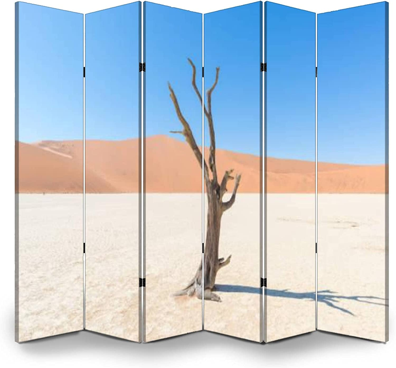 In a popularity Canvas Folding Screen The Scenic and Deadvlei Sossusvlei Pr Great interest Room