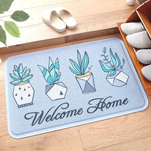 CKH deurmat voor deurvloeren in de deur van de vloer met wrijving, voetmat, voetmat, 45 x 75 cm