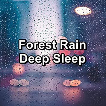 Forest Rain Deep Sleep
