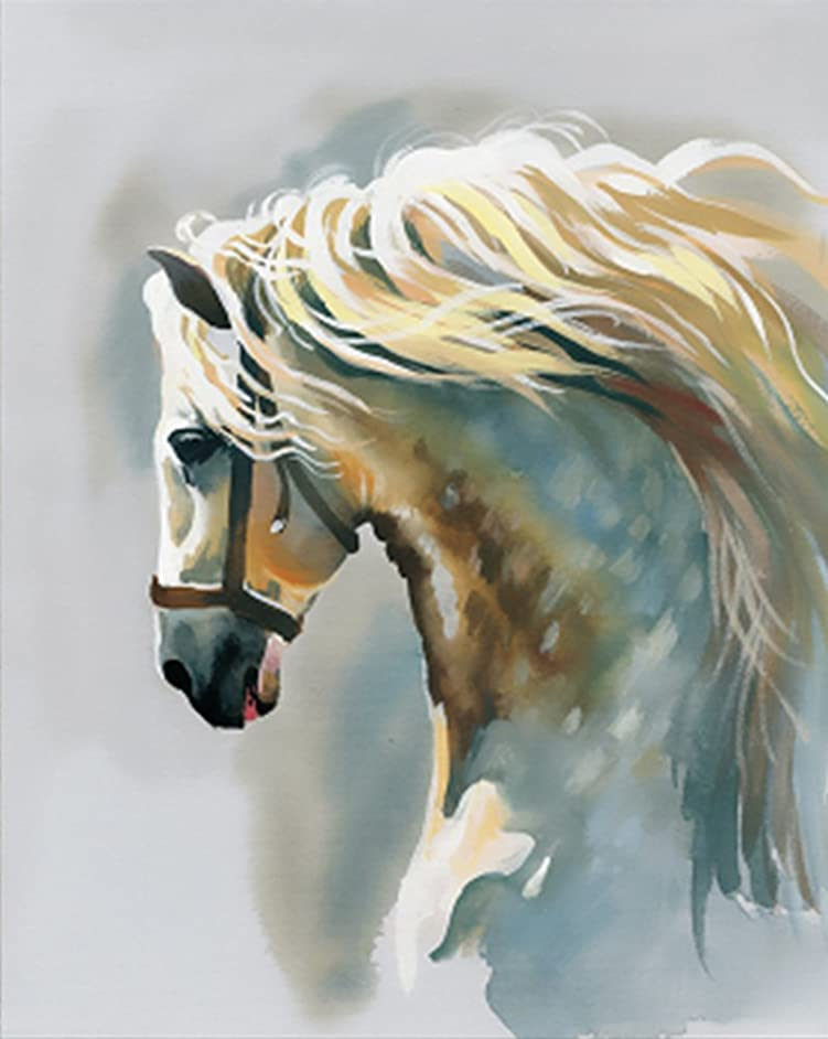 Wowdecor Paint by Numbers Kits for Adults Kids, DIY Number Painting - White Horse Animal 40 x 50 cm - New Stamped Canvas (Framed)