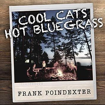 Cool Cats Hot Bluegrass