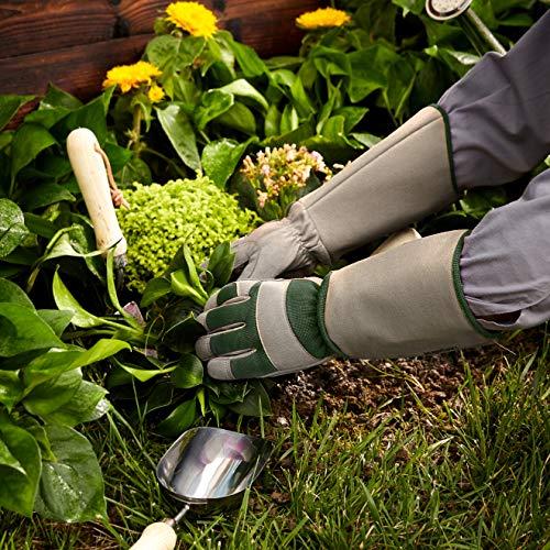 Amazon Basics - Guantes de jardinería, para poda de rosales, protege contra espinas, con protección de antebrazo, color verde, talla L