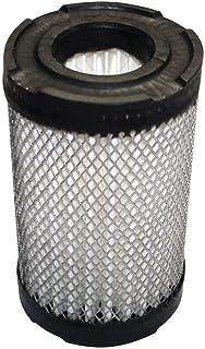 BMS Filtro de aire compatible con cortacésped Tecumseh Motor 35066, repuesto