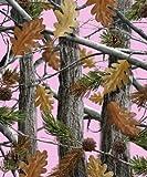 Queen Size The Huntsman Collection Luxury Plush Raschel Blanket-Camo Trees-Pink