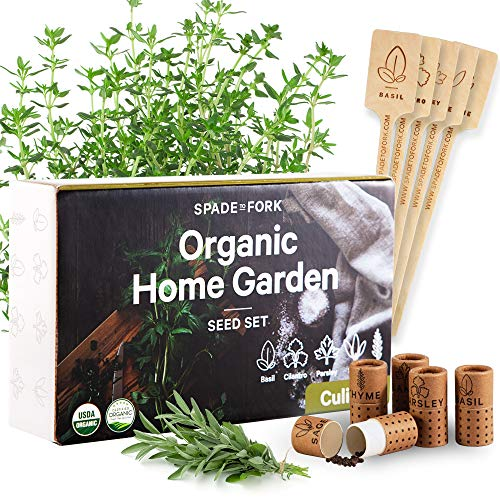USDA Certified Organic Culinary Herb Seeds Collection - 5 Variety - Non GMO Basil, Cilantro,...