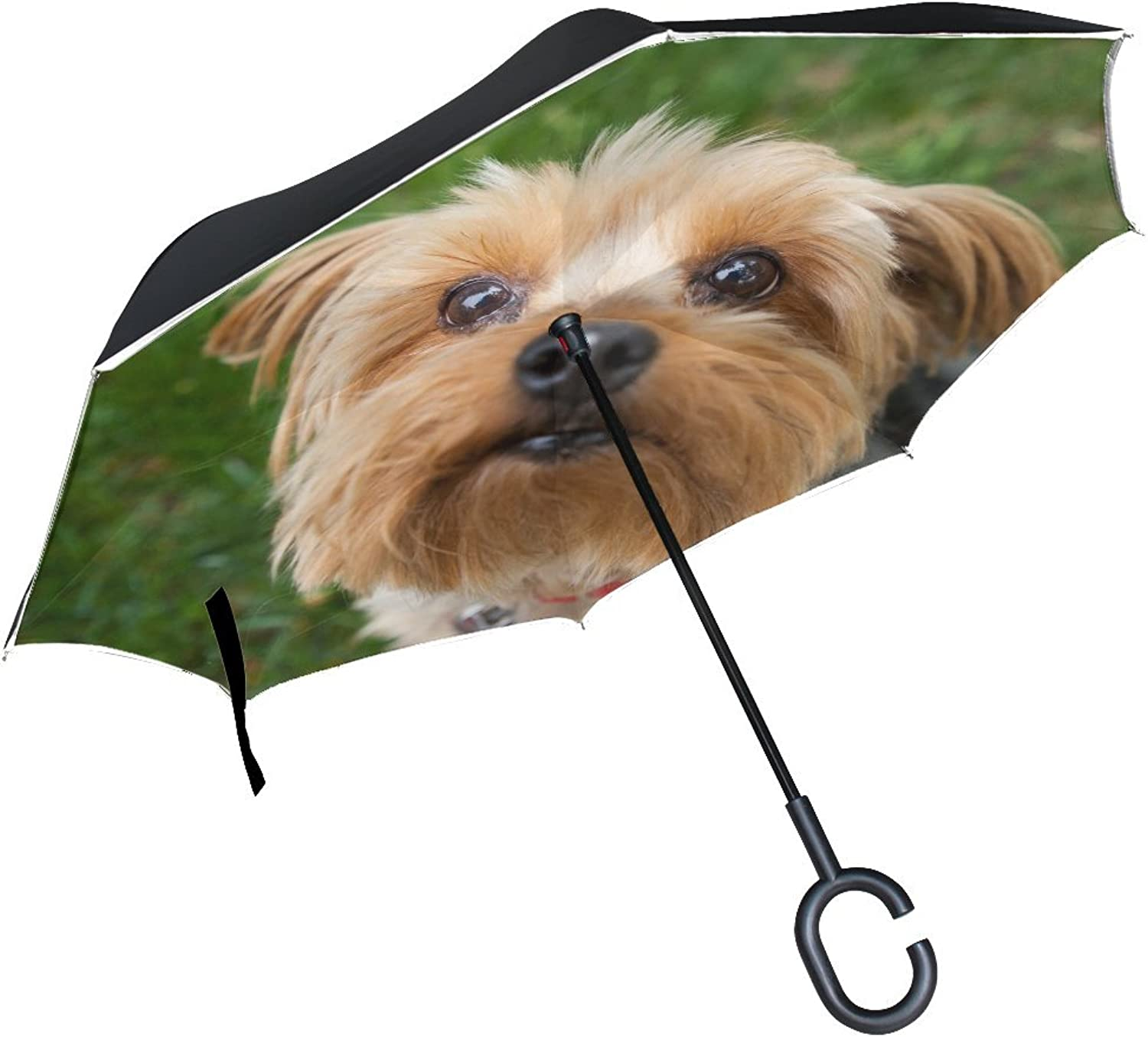 Animal Dog Yorkshire Terrier Yellow Fluffy Puppy Adorable Animated Real Ingreened Umbrella Large Double Layer Outdoor Rain Sun Car Reversible Umbrella