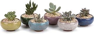 T4U 6.5CM Keramik Sukkulenten Töpfe Kaktus Pflanze Töpfe M