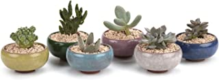 T4U 2.5 Inch Ceramic Ice Crack Zisha Serial Succulent Plant Pot/Cactus Plant Pot Flower Pot/Container/Planter Full Colors Package 1 Pack of 6