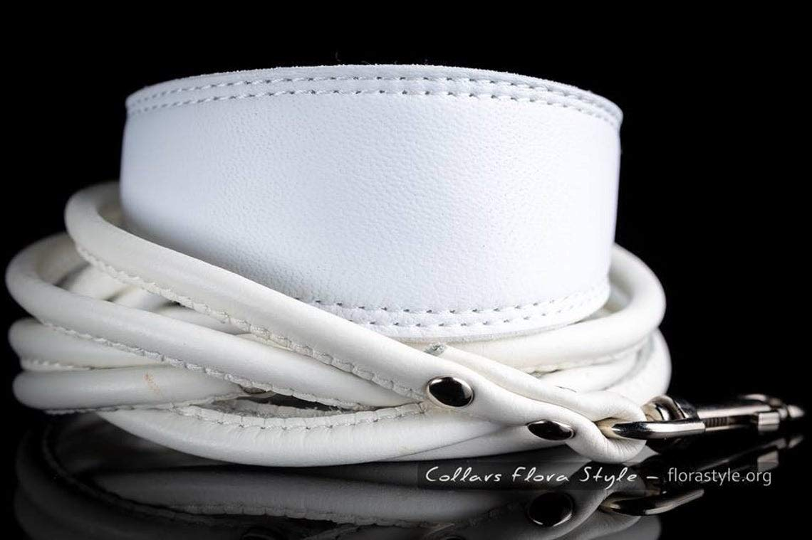 Dog collar and Leash for Popular brand levriero Limited time cheap sale italiano Italian greyhound