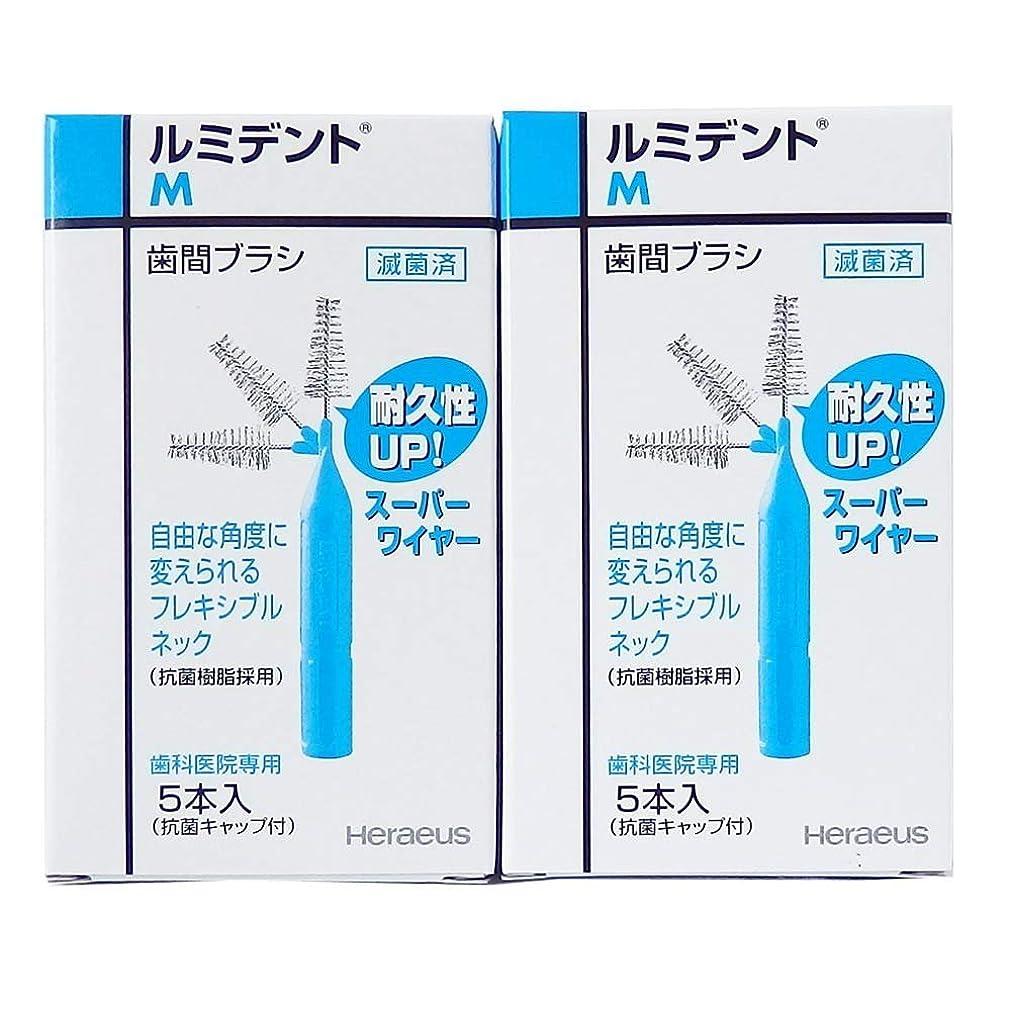 しばしば水素間欠ヘレウス ルミデント 歯間ブラシ フレキシブルタイプ M 5本入 2箱 サンプル付