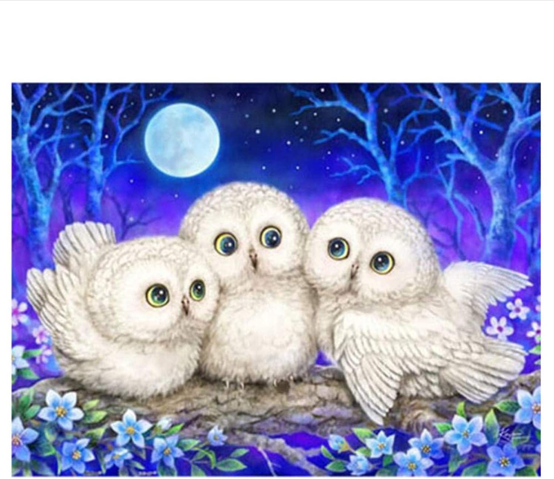 The 5D DIY Diamond Painting Cartoon White Owls 3D Diamond Painting of Diamant Painting Embroidery Animal Gifts,45x60cm