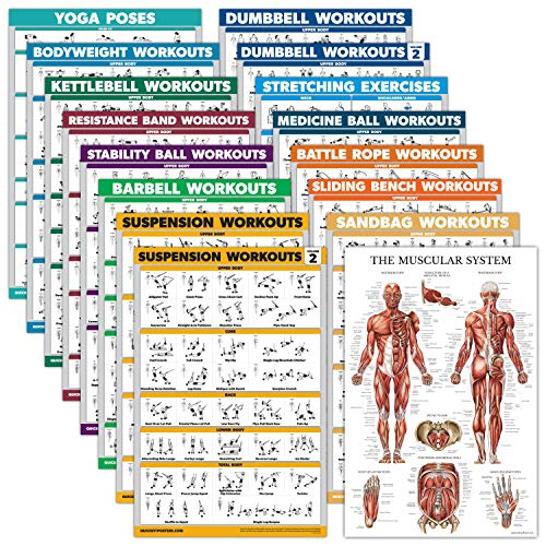 """16 Pack - Exercise Poster Set: Dumbbell, Suspension, Kettlebell, Resistance Bands, Medicine Ball, Battle Rope, Stretching, Bodyweight, Barbell, Yoga, Exercise Ball, Muscular (LAMINATED, 18"""" x 27"""")"""