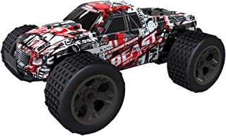 Wenini 1:20 Mini RC Racing Car 2WD High Speed RC Racing Car 4WD Remote Control Truck Off-Road Buggy Toys for Kids Birthday...