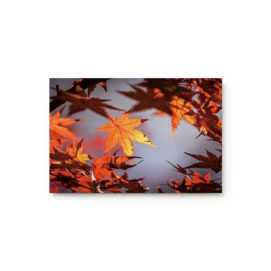 計算可能配管工新しさCloud Dream Home 秋の落ちるカエデの葉 ドアマット キッチン 床 バス 玄関 ラグ マット 吸収性 室内 バスルーム 装飾 ドアマット ゴム 滑り止め オレンジ 40.64cm x 60.96cm 20