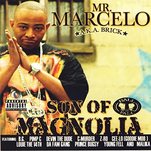 Mr. Marcello Feat Various Artists