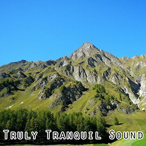 Nature Recordings, Sleep Baby Sleep & Mother Nature Sound FX