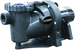 Everbilt 1.5-HP 230/115-Volt In-Ground Pool Pump with Protector Technology
