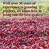 The Spice Way - Mexican Seasoning Spice Blend. No Salt, Non GMO, No preservatives. 2oz #4