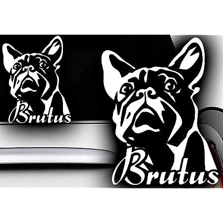 Hr Werbedesign 1x Wunschnamen 13x10cm Name Aufkleber Französische Bulldogge Bulldog Bully Auto Auto