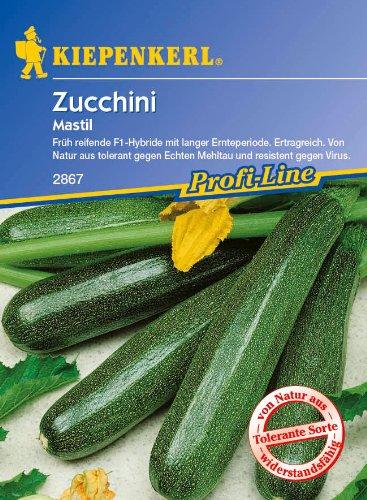 Zucchini, 'Mastil F 1'