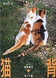 猫背―振り向かニャいで
