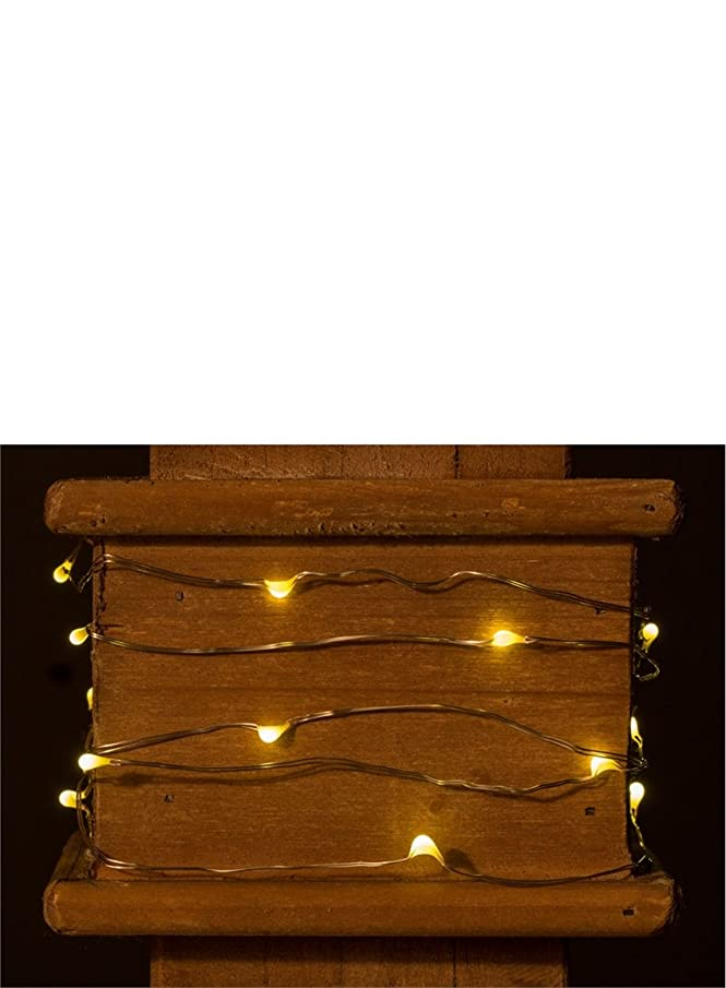 LED Light String with White Lights20 Lights75