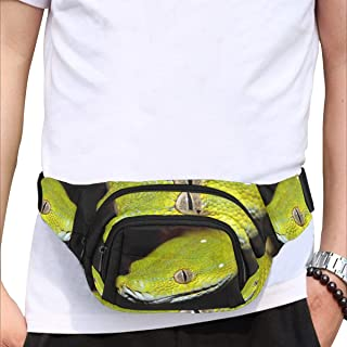 Beautiful Lion With Headphones Fenny Packs Waist Bags Adjustable Belt Waterproof Nylon Travel Running Sport Vacation Party For Men Women Boys Girls Kids