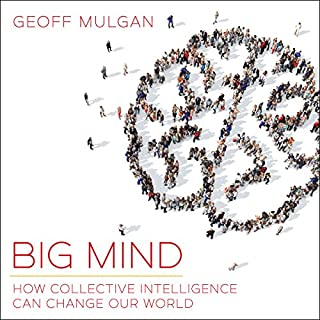Big Mind cover art