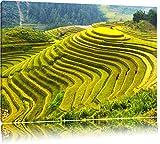 Chinesische Reisplantagen Treppenfelder Format: 80x60 auf