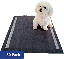 Solimo Amazon Brand Odor Control Activated Carbon Super Absorbent Heavy Duty Leak Proof Pet Puppy Dog Training Pee Pads, Regular, 50 ct