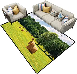 Desk Chair mat for Carpet Farmhouse Decor Collection Farmland After Harvest Peaceful Terrain Remote Rural Country Plantation Seasonal Image Yellow Green Bathroom Rugs Area 5'x8'