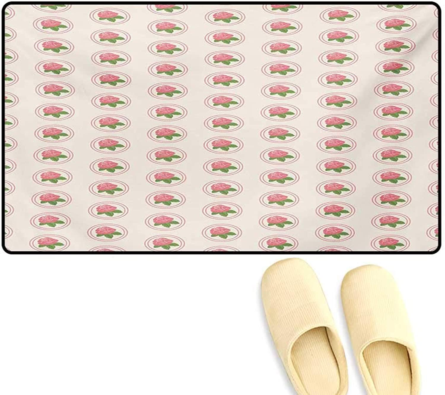 Door-mat,Country Farmhouse Theme pink Blooms Leaves in Frames Image,Door Mats Inside Bathroom Mat Non Slip,Pale Pink White Green,24 x36