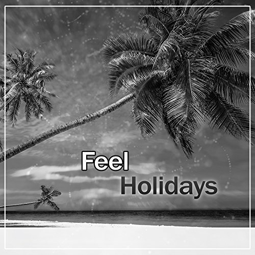 Feel Holidays - Holiday Atmosphere in the House, Sexy Music, Nice Time, Vibrant Rhythms, Packing the Suitcases, Ibiza, Bahamas, Brazil, Holiday Island