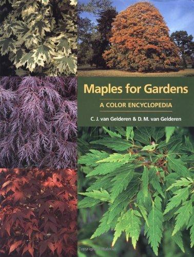 Maples for Gardens: A Colour Encyclopedia