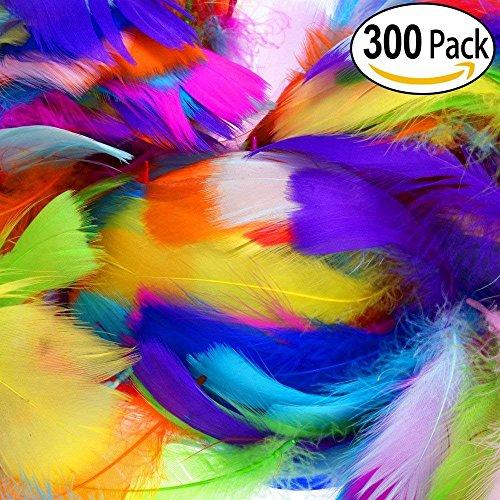 LANTECK Plumas de la decoración de 300pcs 10color, Plumas de plumas naturales coloridas 8-15cm para las decoraciones caseras del partido de la boda del arte de DIY