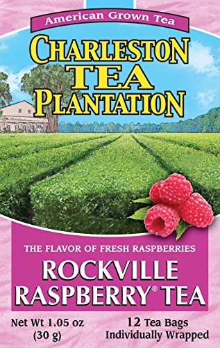 American Classic Pyramid Teabags, Rockville Raspberry, 12 Count, 1.05 Oz