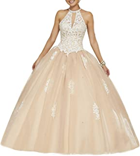 Women's Tulle Halter Neck Lace Quinceanera Dresses Ball Gown Beaded Prom Dress PM127