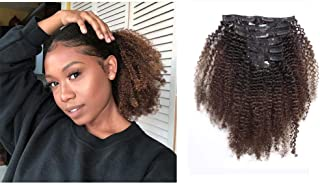 Afro Kinky Curly Clip in Hair Extensions Remy Brazilian Human Hair 4A 4B for African American Black Women Two Tone T#1B/4 Brown 12 Inch,120 Gram