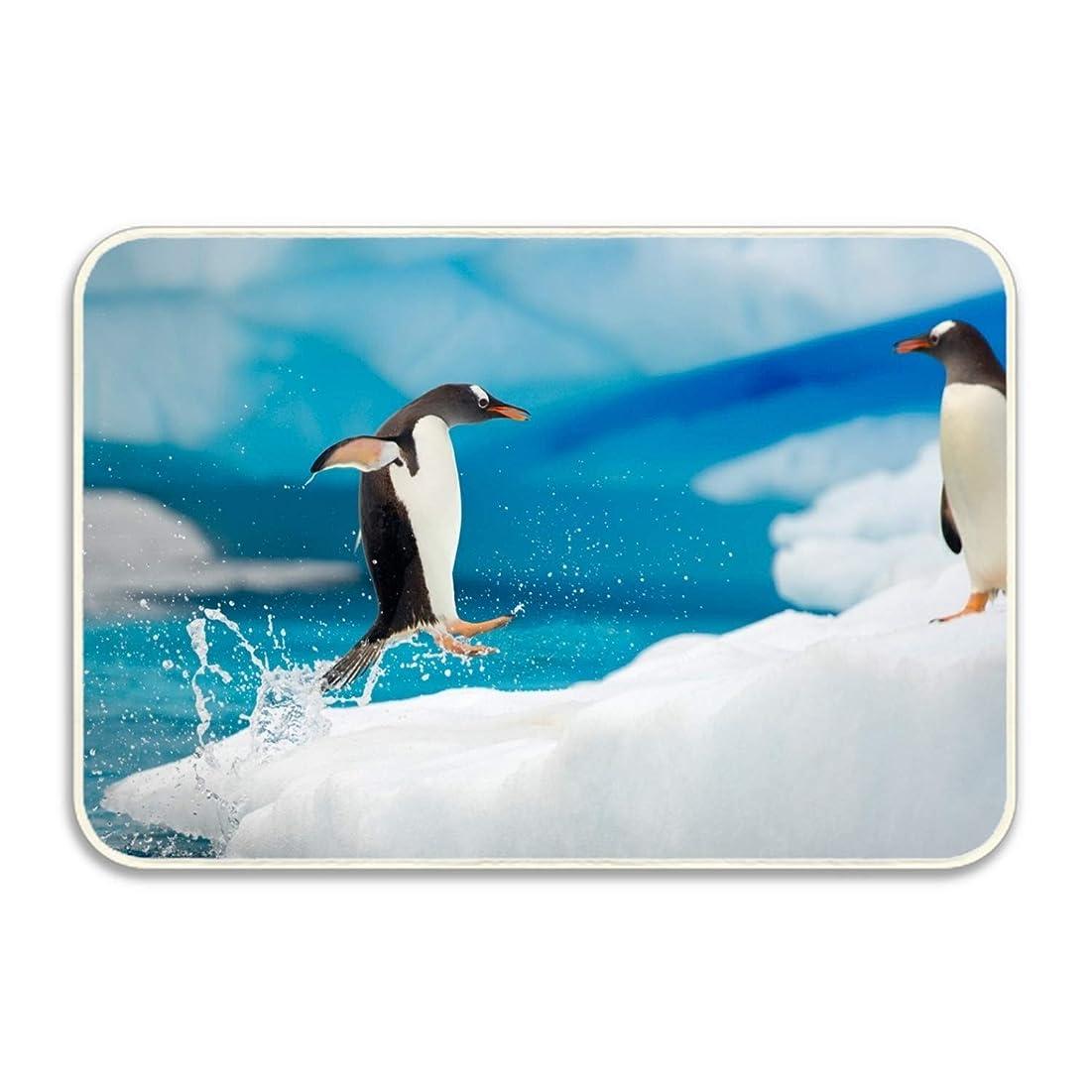 シャベル推進、動かす一部マット 玄関マット ふわっと優しい踏み心地のアウトドアマット 約40×60cm ペンギンアイスファニーバードウォーターペンギン エントランス ドア ガーデニング ガーデン おしゃれ かわいい 土間 泥落とし ナチュラル 外 屋外 フロッグ