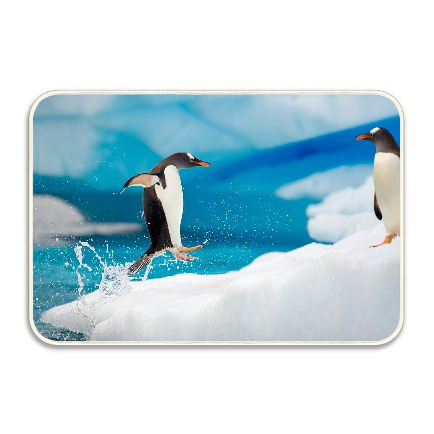 不潔排気飛行機マット 玄関マット ふわっと優しい踏み心地のアウトドアマット 約40×60cm ペンギンアイスファニーバードウォーターペンギン エントランス ドア ガーデニング ガーデン おしゃれ かわいい 土間 泥落とし ナチュラル 外 屋外 フロッグ
