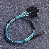 Shipenophy Câble SFF-8654 vers 4xSata Serveur Données Câble Mini Câble SAS Câble de Transmission de données Ligne de Connexion Durable 12 Gbps Pratique pour Disque Dur pour Ordinateur pour Serveur