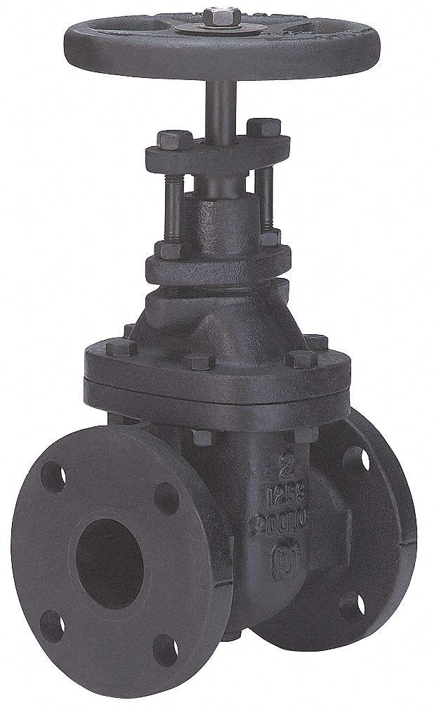 Special price Gate Valve Class 125 Sale Special Price 2 in.
