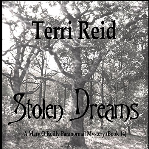 Stolen Dreams cover art
