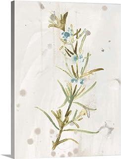 Antique Earthtone Herbs III Canvas Wall Art Print, 36