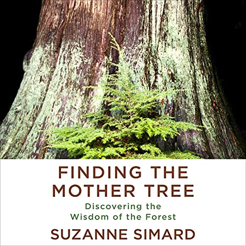 Finding the Mother Tree Audiobook By Suzanne Simard cover art