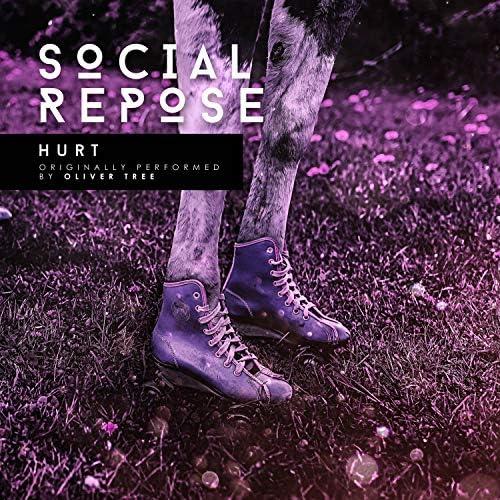 Social Repose