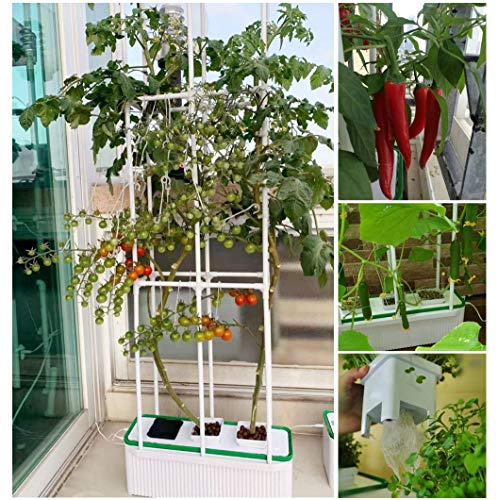 "Smart Hydroponics Growing System for Indoor Gargen,E-SUPEREGROW Hydroponic Gardening System with Smart Timer Pump,Large Self Watering Planter with 60"" Trellis for Cucumber Tomato Herd Pepper Mint"